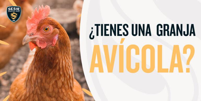 Alarmas para granjas avicolas