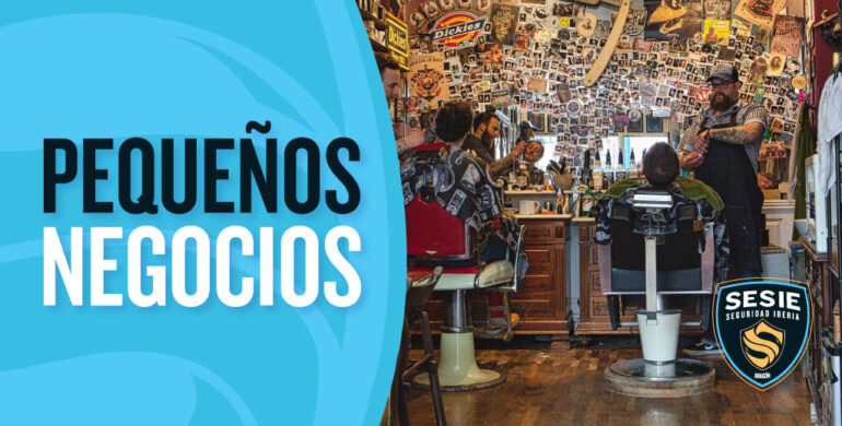 Alarmas para negocios pequeños en Zaragoza