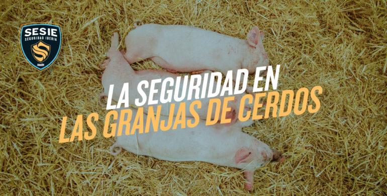 alarmas-para-granjas-de-cerdos